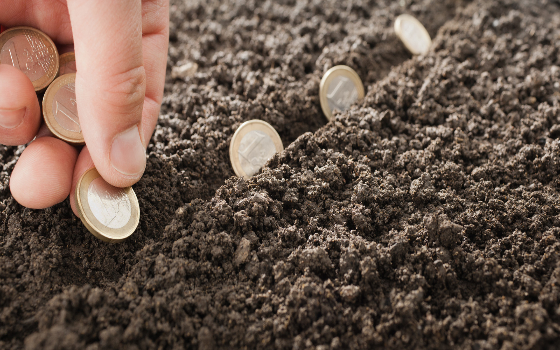 Man planting Euro coins in soil